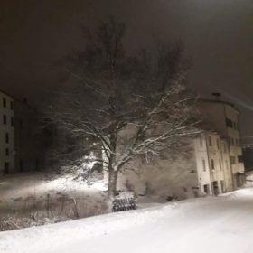 Un'altra foto di Giovanna Paglione scattata nella serata del 31 dicembre 2018