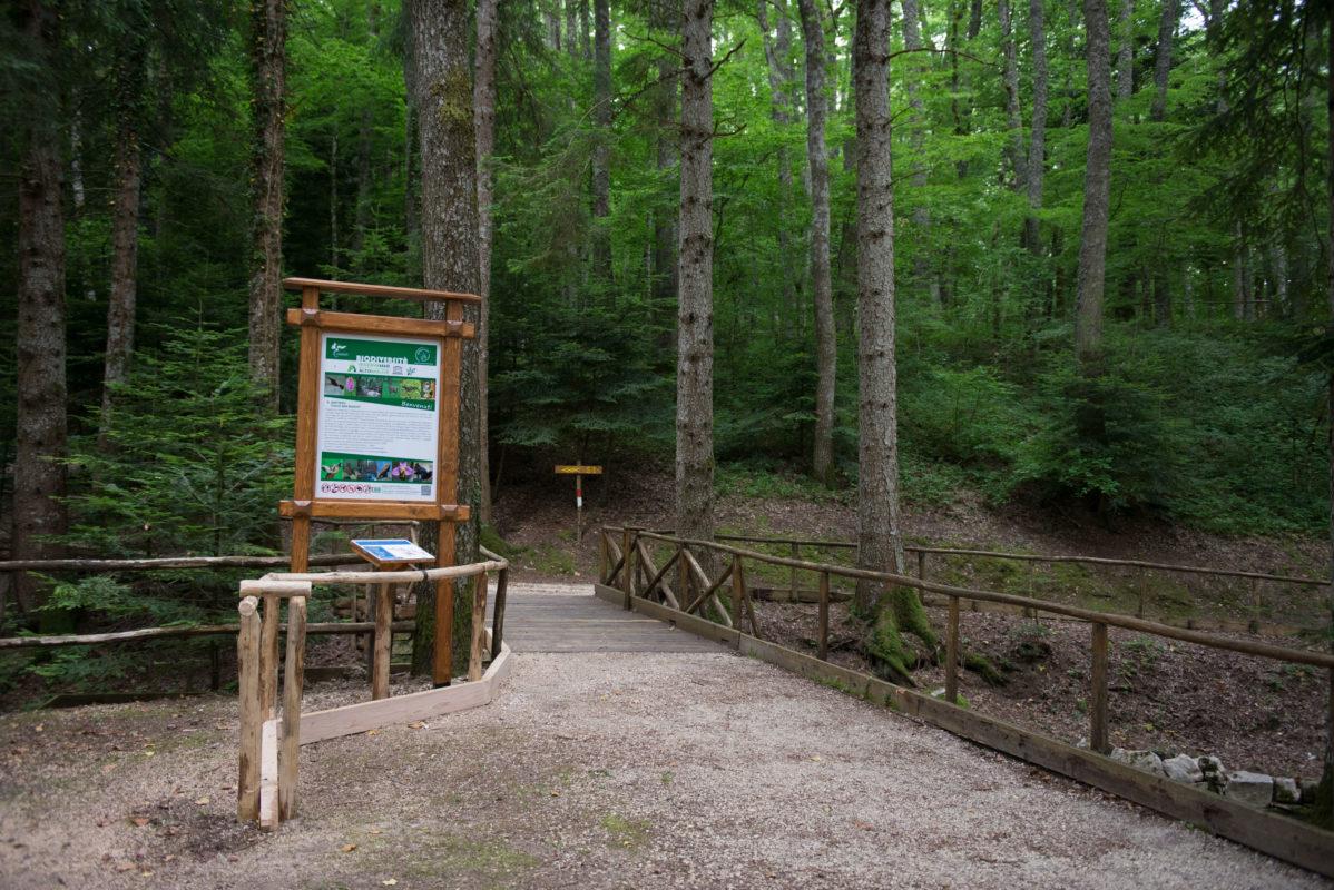 Riserva UNESCO Alto Molise Montedimezzo. Foto: Massimo Palmieri